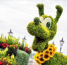 Epcot® International Flower & Garden Festival